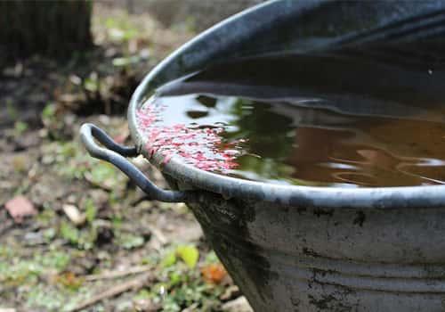 04cea646eba26 Verplichte installatie van regenwaterput - Vochtexpert.com