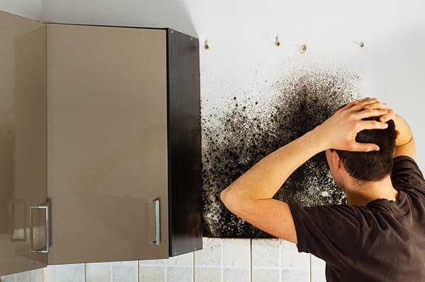 Condensatieproblemen en condensatievocht tips en oplossingen zoals ventilatie - vochtexpert.com