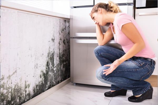 Impact van een vochtig huis op gezondheid - reuma - allergie - eczeem - astma - ontstekingen -immuunsysteem